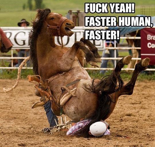 horse, human, meme