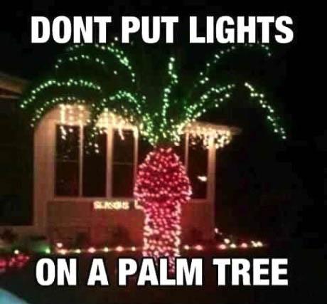 lights, palm tree, fail, dick, penis, christmas