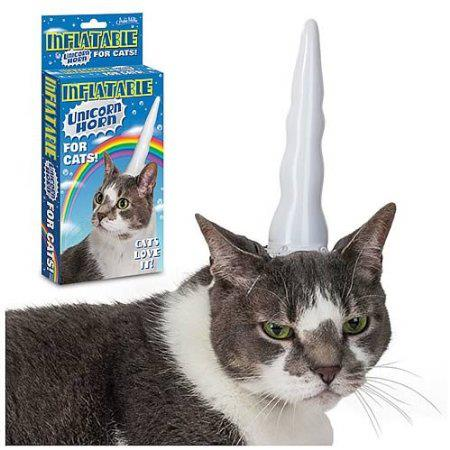 cat, product, unicorn, wtf