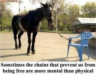 horse, chair, chains, mental