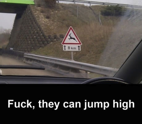 fuck they can jump high, deer crossing, sign, lol