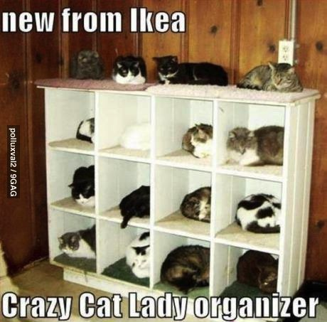 ikea, meme, cat, crazy lady