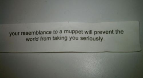 your resemblance to a muppet will prevent the world from taking you seriously