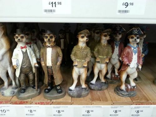 dog, figurines, pirate, army, doctor, suit, wtf