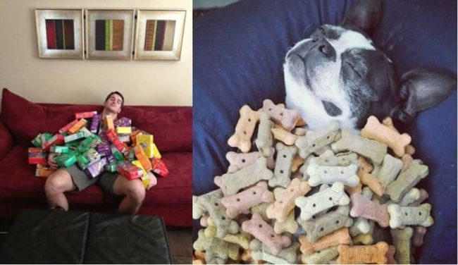 totallylookslike, dog, guy, pile, girl scout cookies