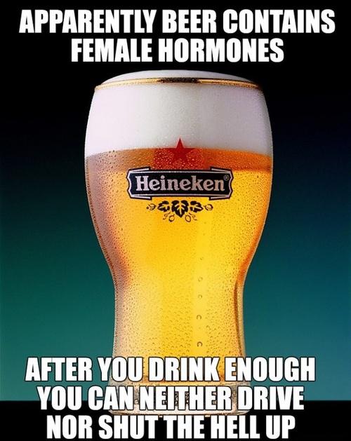 beer, female hormones, drive, talk, meme, lol