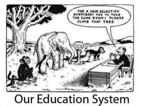 education, system, fair, unfair, test