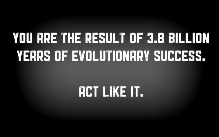 evolution, success, responsibility