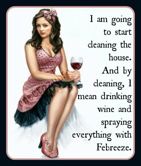 cleaning, house, women, febreze