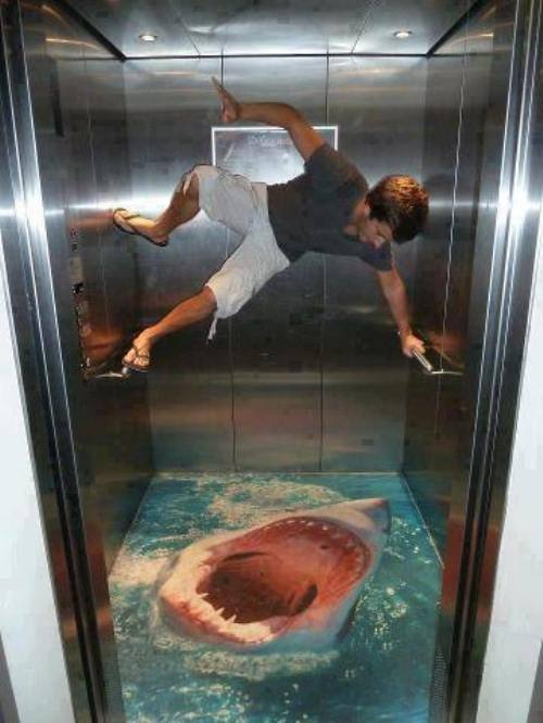 elevator, shark, ad, floor