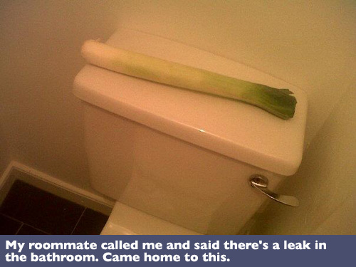 troll, leak, bathroom