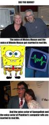 cartoon, voice actors, real life, spongebob, mickey mouse, minnie