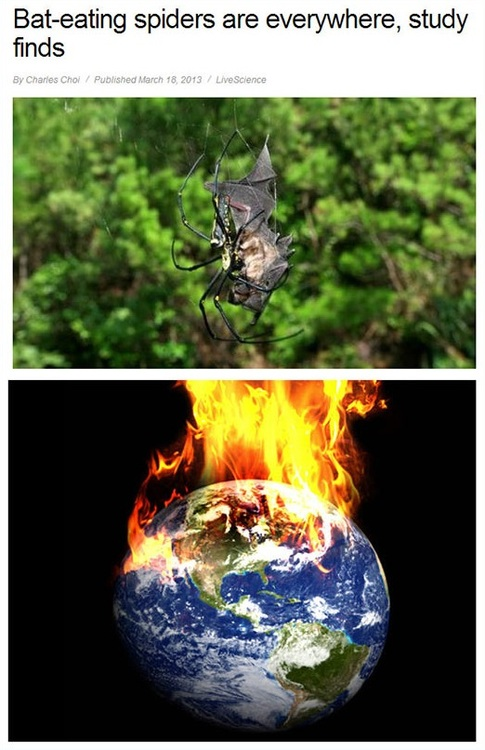 spiders, bat, earth, fire