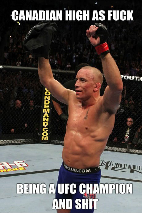 gsp, canadian, high as fuck, ufc
