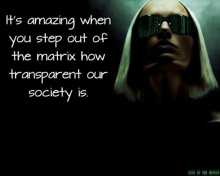 matrix, transparent, life, society