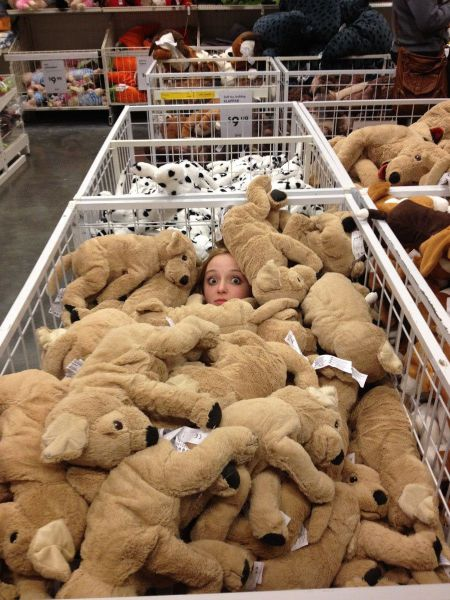 stuffed animals, person, walmart, wtf
