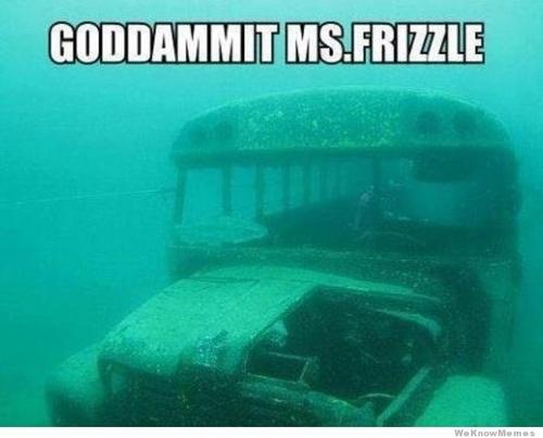 meme, school bus, under water, wtf