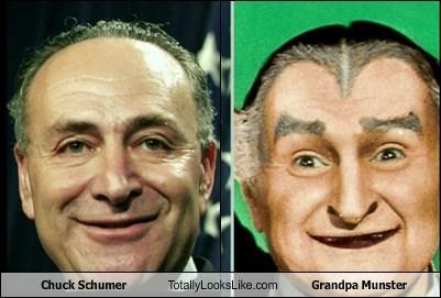 totallylookslike, chuck schumer, grandpa munster