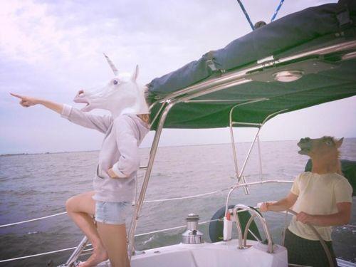 boat, unicorn, horse, masks, wtf