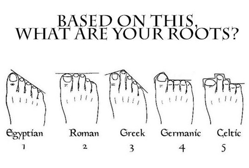 toes, roots, dyk