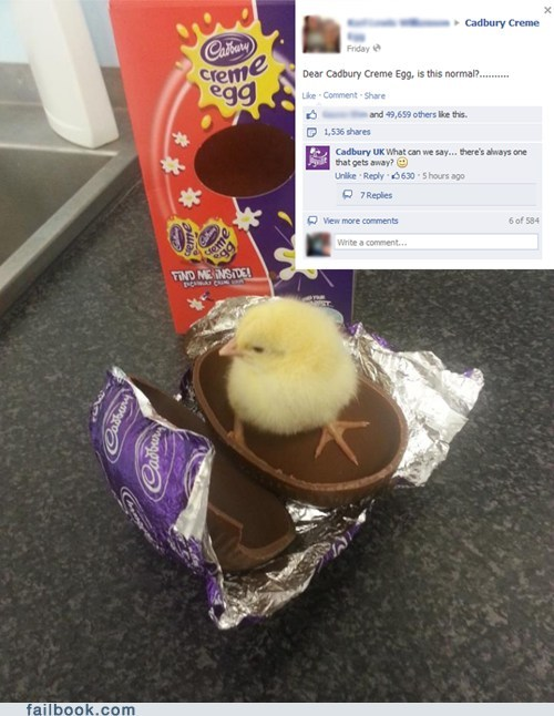 chocolate, egg, chick, facebook, easter