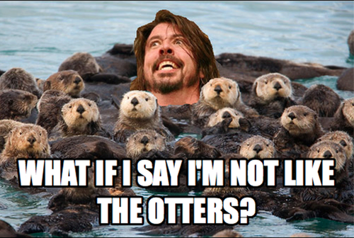 what if I say I'm not like the otters, dave grohl, meme