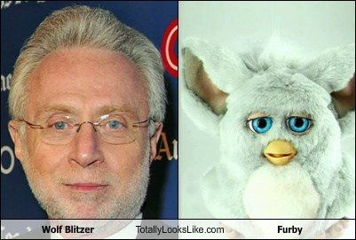 totallylookslike, wolf blitzer, furby