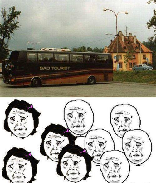 meme, bus, name, fail, sad tourist