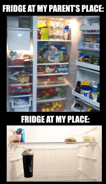 refrigerator, parents, apartment