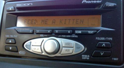 radio, feed, kitten, wtf