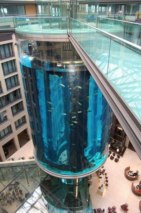 mall, aquarium, wow, giant, huge