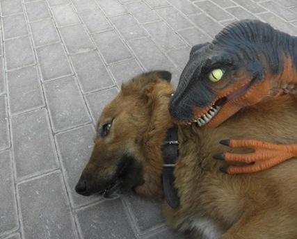 dog, dinosaur, creepy