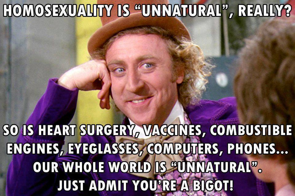 wonka, meme, homosexuality, unnatural