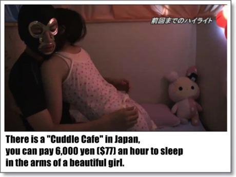 japan, cuddle cafe, forever alone, wtf, creepy