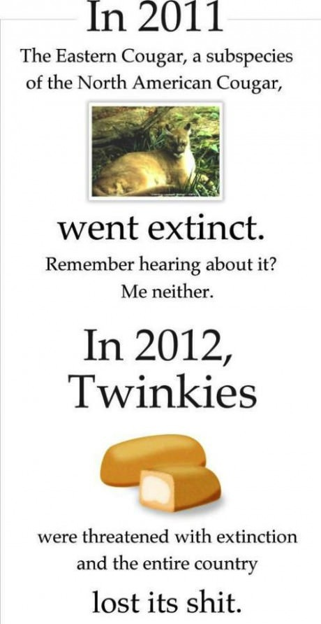 twinkie, extinction, cougar, sad, 2011, 2012