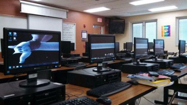 long cat, monitors, lab