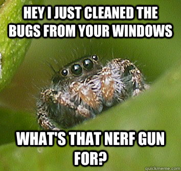 good guy spider, meme, clean, insects, bugs