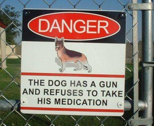 sign, dog, gun, medication, danger