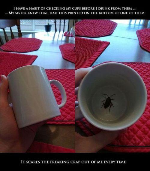 coffee mug, troll, prank, insect, print