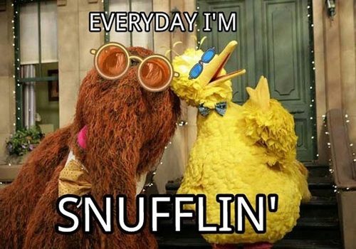 sesame street, snufflin', reference, rap, big bird, snuffleupagus