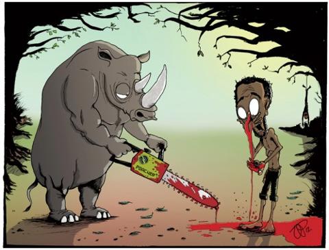 rhinoceros, nose, horn, fair