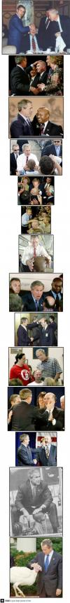 george bush, bald, compilation
