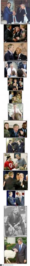 george bush, bald, compilation