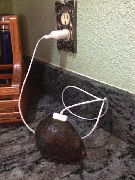 plug, avocado, wtf