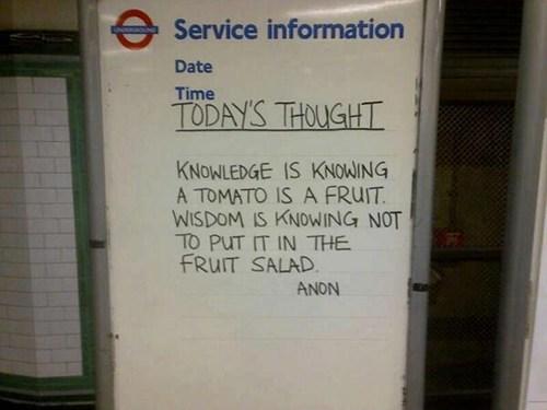 fruit, tomato, salad, knowledge, wisdom