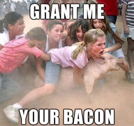 pig, tackle, pig, kids, bacon