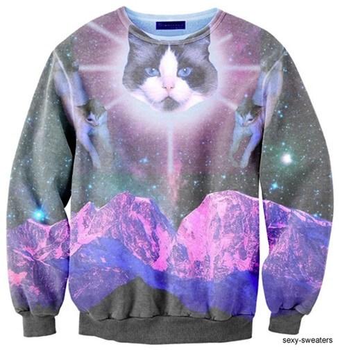 sweater, cat, shirt, wtf