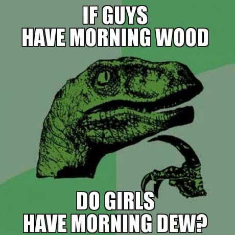 if guys have morning wood, do girls have morning dew?, philosoraptor, meme
