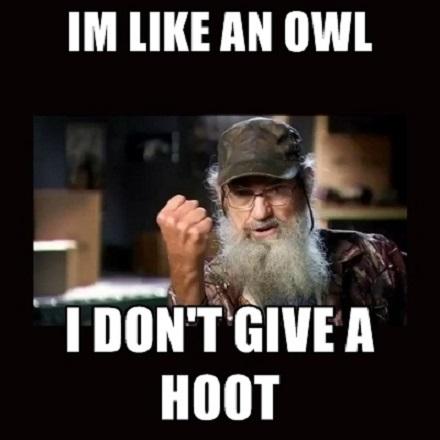 I'm like an owl, I don't give a hoot