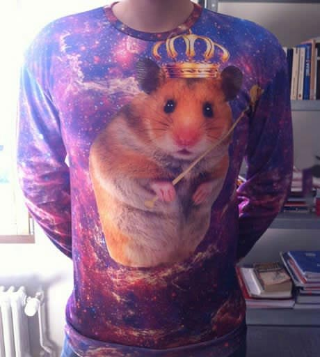 hamster, prince, scepter, wtf, shirt, lol